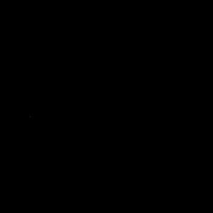 logo Freelancer.nl zwart